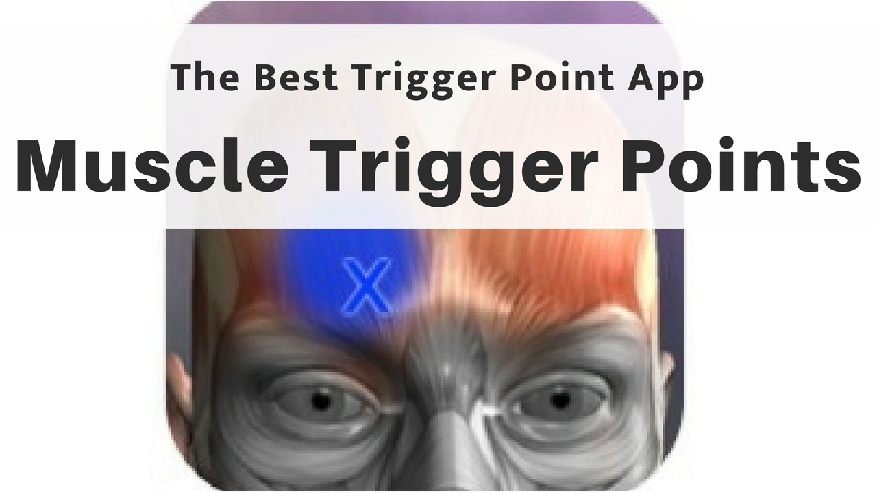 The Best Trigger Point App: Muscle Trigger Points (Massage Monday